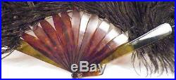 Antique Hand Fan Black Ostrich Feather Imitation Tortoiseshell Sticks Guards