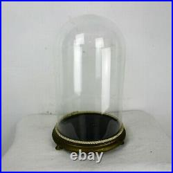 Antique Round Hand Blown Glass Globe Dome Taxidermy Steampunk Clock 15.7 9.44
