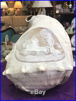 Large Victorian Antique Hand Carved Cameo Conch Shell Horse Chariot