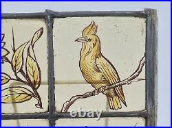 Old Victorian Stained Glass Window Hand Painted Kiln Fired Bird & Flowers Motifs