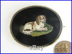 QUALITY ANTIQUE GOLD HAND CRAFTED MICRO MOSAIC SPANIEL DOG BROOCH c1860