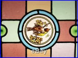 VICTORIAN ENGLISH LEADED STAINED GLASS WINDOW Hand Painted Bird 24.25 x 15.5